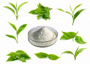 L-Theanine supplier